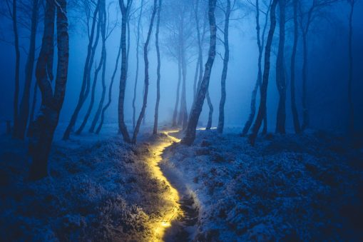 stock-photo-fairy-path-140700811-1600px-1500x1000